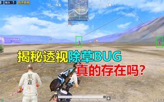 《和平精英bug》揭秘和平精英透视除草BUG,真的存在吗?(视频)
